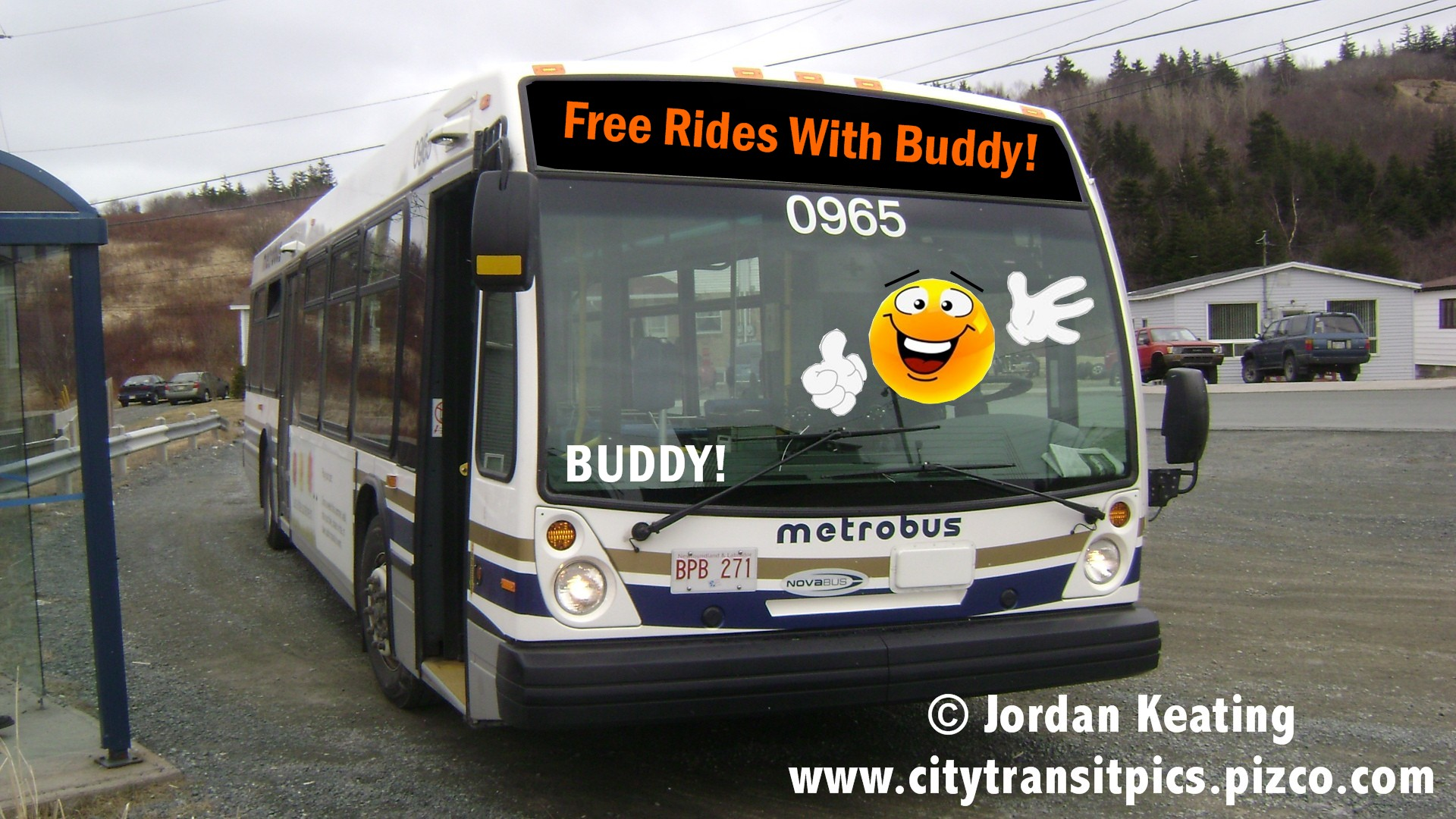 Buddy_Bus.jpg