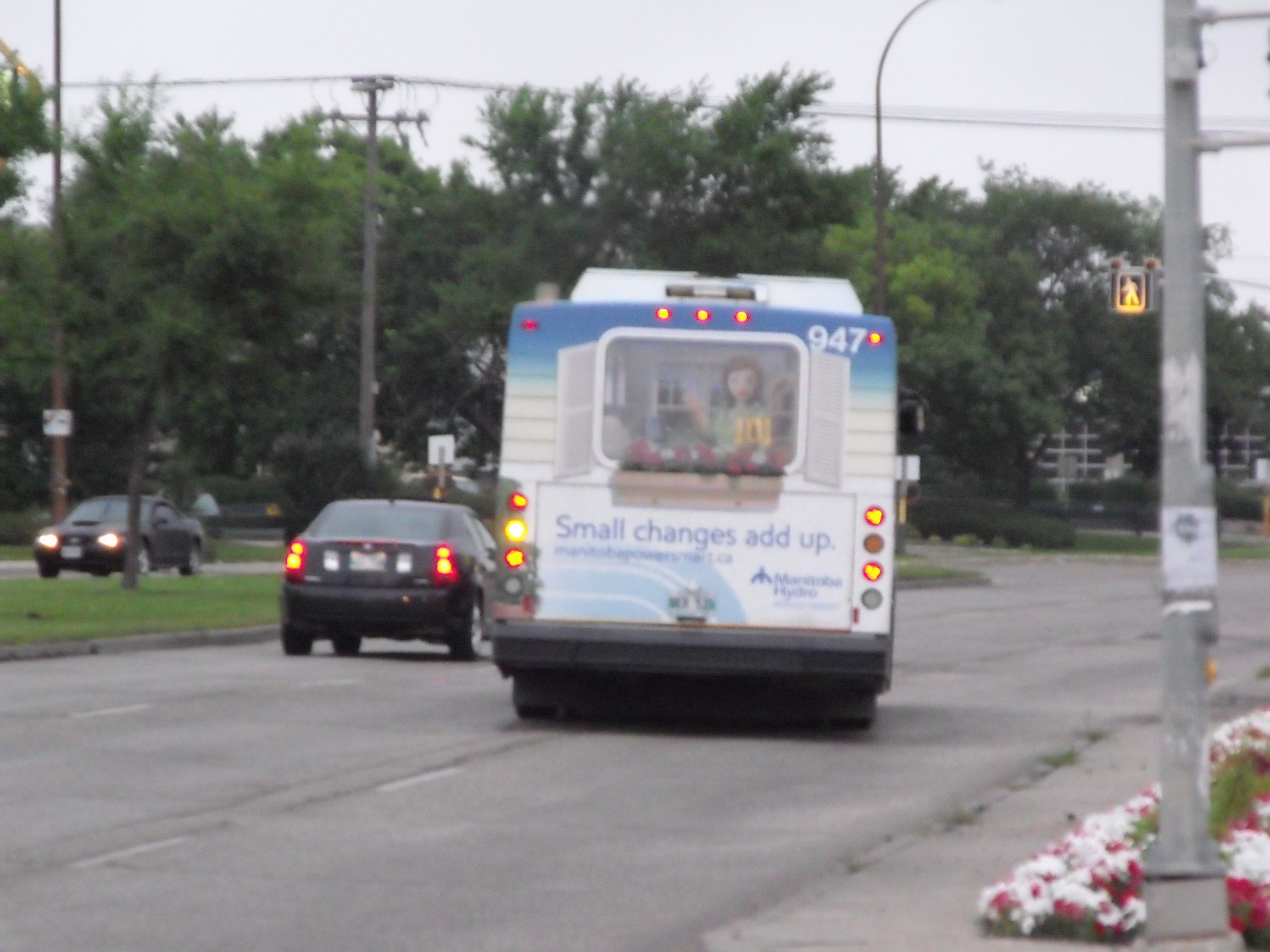 WT_BT_Buses_MTHA_082.JPG
