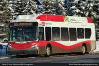 Calgary Transit 8202 11-20-19.jpg