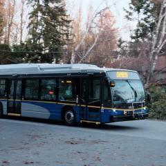 ilikebuses