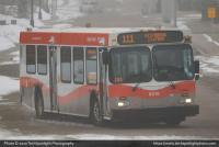 Calgary Transit 8018 4-05-20.jpg