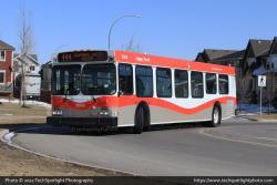 Calgary Transit 8048 3-30-21.jpg
