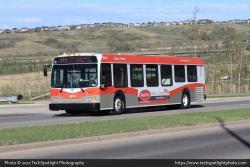 Calgary Transit 8075 5-18-21-b.jpg