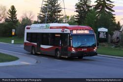 Calgary Transit 8443 6-01-21.jpg