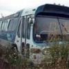 megabusfan12