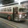OC Transpo 8238