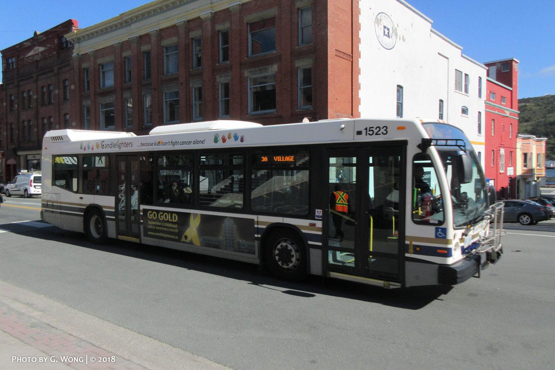 Metrobus_1523-a.jpg