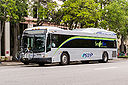 Pinellas Suncoast Transit Authority 12106-a.jpg