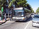 Miami-Dade Transit 06173-a.jpg