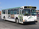 Ajax Pickering Transit Authority 2020-a.jpg