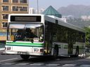 Discovery Bay Transportation Services Limited HKR35-a.jpg