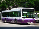 Discovery Bay Transportation Services Limited DBAY70-a.jpg