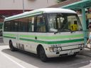 Discovery Bay Transportation Services Limited HKR77-a.jpg