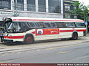 Toronto Transit Commission 2455-a.jpg