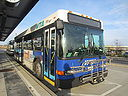 Whatcom Transportation Authority 810-a.jpg