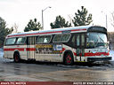 Toronto Transit Commission 2393-a.jpg
